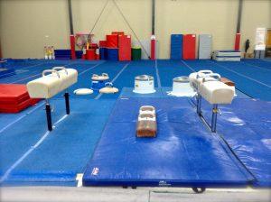 Main-Gym-Pommel-Area